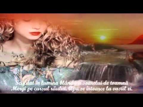 IRINA LUCIA MIHALCA - Un cântec a trecut prin zidul de piatră