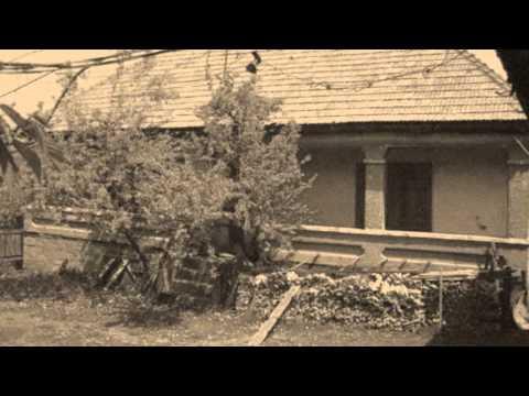 Anca Tănase - Cină