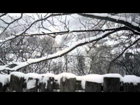 Ana Ardeleanu - Alint De Ninsoare