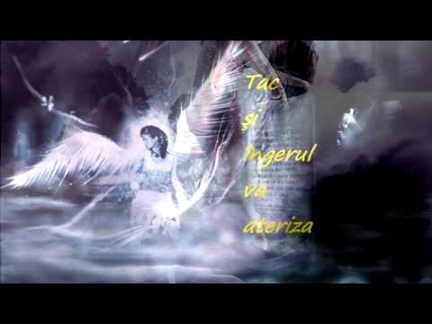Sforarul îngerilor song Kelly Family   An Angel