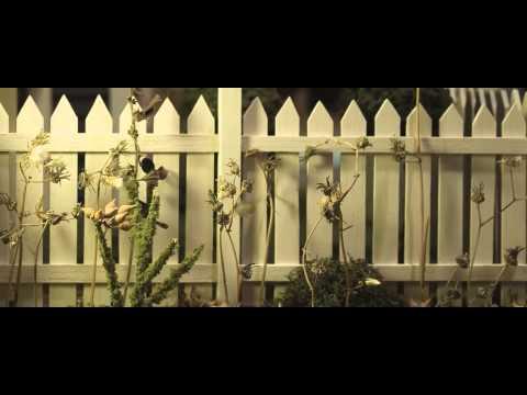 Fence dolly shot