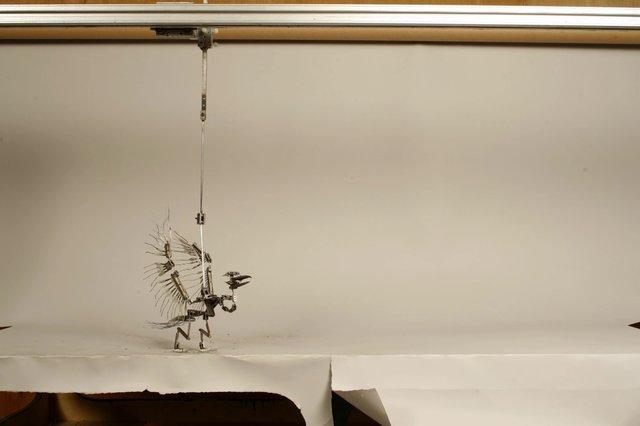 first bird armature animation test
