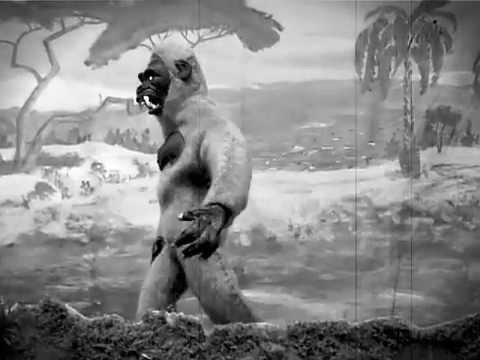 Gorilla Puppet Test