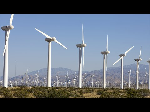 Richard Heinberg: Our Renewable Future