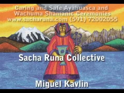 Sacha Runa Caring and Safe Ayahuascar and Wachuma Shamanic Ceremonies