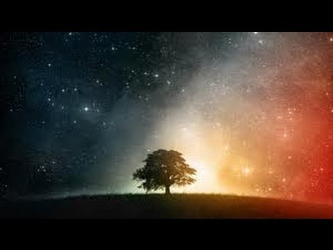 Nassim Haramein - Secrets of the Universe