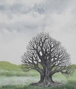 tree_doodle_XII