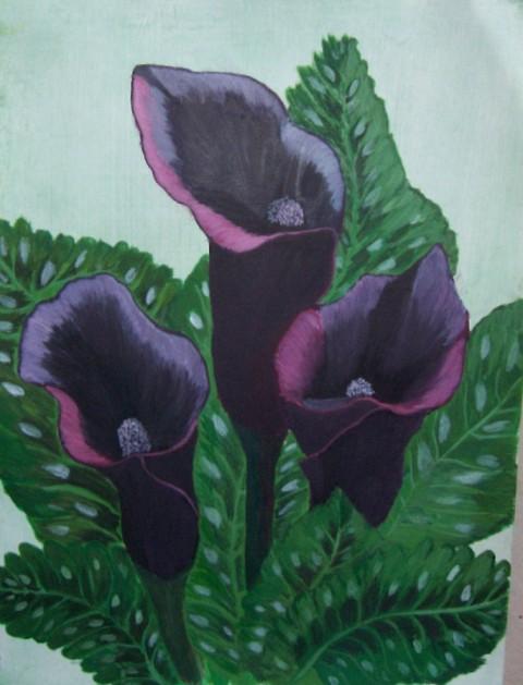 Arm Lilies