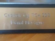Gradam Ceoil Trophy