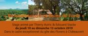 """Stage """"Ressourcement et bains de forêt"""" à Chateauvert"""
