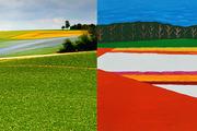 Paysage - Fernand Dejardin (peinture) & Mohamed Sridi (photo)