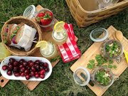 EDUCATION FOR SUSTAINABILITY NETWORK'S SUSTAINABLE PICNIC