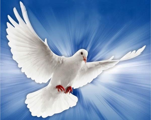 Canto de Pentecostes (Salmo 103 - 104) – Ave Luz
