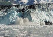 Harvard Glacier calving