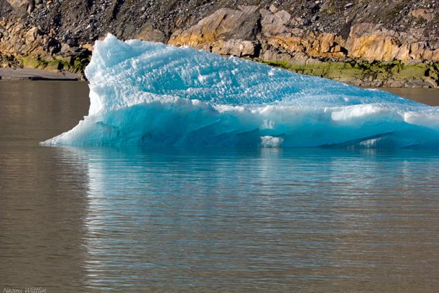 Iceberg and reflection