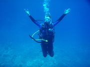 Welcome to the Underwater World