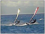 National and International Windsurfing Slalom Race