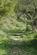 Hike / Πεζοπορία