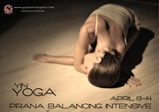 Yin Yoga  - Prana Balancing Intensive