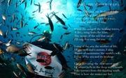 THALASSA – Cradle of Life - Antiparos / ΘΑΛΑΣΣΑ – Λίκνο της Ζωής