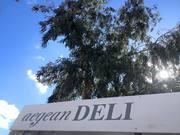 Live music at Aegean Deli