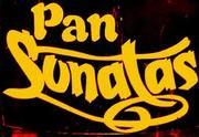 Pan Sonatas presents their Annual Band Launch