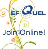 EFQUEL Innovation Forum 2010