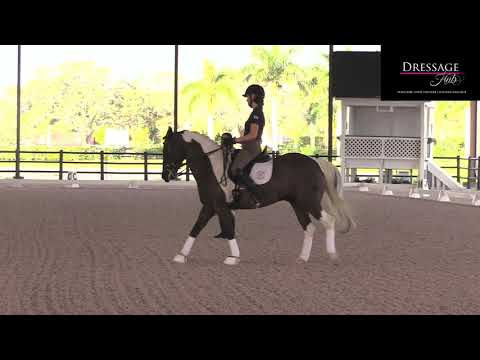Allison Brock: Be Prepared To Let Things Fall Apart When Riding Dressage