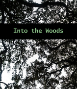 "Into the Woods"" an installation and art exhibit by Deborah Knispel"
