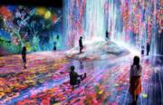 The Digital Art Show