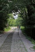Περπατώντας στη φύση...