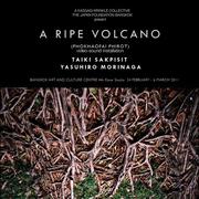 """นิทรรศการศิลปะ """"ภูเขาไฟพิโรธ"""" (A RIPE VOLCANO)"""