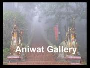 """นิทรรศการ """"เสน่ห์เชียงใหม่ที่เกินพรรณนา""""(The Indescribable Charm of Chiang Mai and North Country)"""