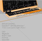 """งานแสดงดนตรี """"Delicate Direction"""""""