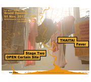 """นิทรรศการ """"THAITAI FEVER - STAGE TWO: OPEN Certain Site"""""""