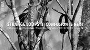 """นิทรรศการ """"Strange Loops II: Confusion Is Next"""""""