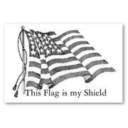 Flag Day, June 16, 2009