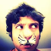 The Tiger and the Moustache
