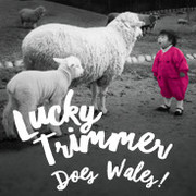 Lucky Trimmer Does Wales!