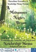 "Marvellous Pretenders & Newbridge Memo present ""A Midsummer Night's Dream"""