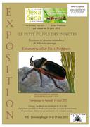 """Exposition : """" le petit peuple des insectes"""" : Insectarium Jean Leclercq à Waremme"""