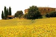Toscane - Un certain art de vivre