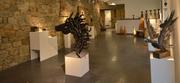 Participation de 2 membres Arts et Lettres à l' exposition sur le thème  « Auprès de mon arbre » à Natoye.