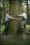 Timber par les Primitives  Théâtre de rue - A partir de 5 ans