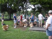 Tampa Bay Corgi Meetup - West Park Dog Park