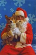 Charlie's 1st Christmas