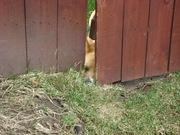 What ya doin' huh?