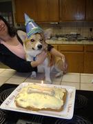 Fox's 1st Birthday 8-21-10 007