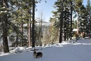 Tahoe November 2012
