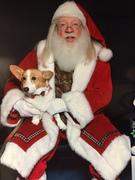 Tucker and Santa 2015